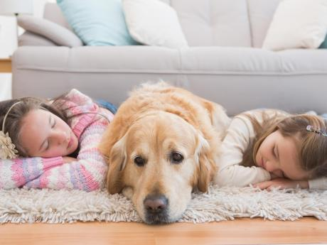 kids and dog playing in home