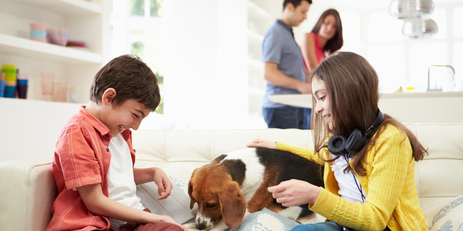 kids playing with dog at home Kearney HVAC
